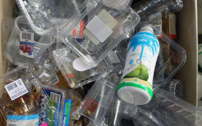 Multi million dollar grant for recycling solution – Echonetdaily