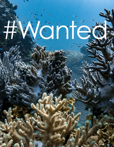 PN_Wanted_CoralReef