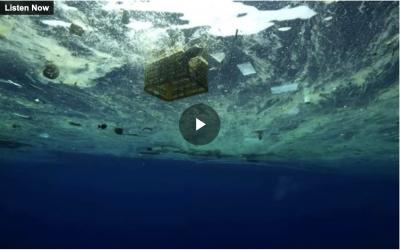 Plastic shredder hopes to clean up Pacific Ocean – NewstalkZB